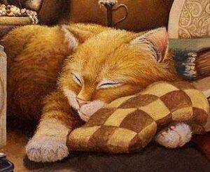 Сны кота
