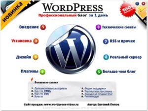 """Обзор курса """"Wordpress – Профессиональный блог за один день"""""""