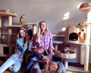 Анастасия и Полина Аммосовы, кошки, собаки, благотворительность